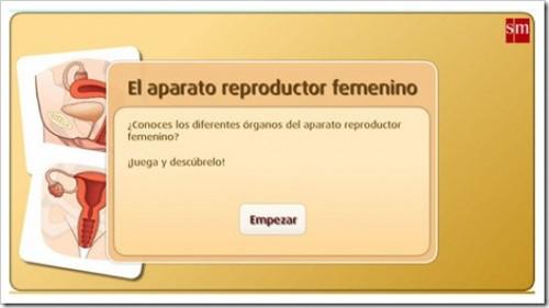 http://www.primaria.librosvivos.net/archivosCMS/3/3/16/usuarios/103294/9/6EP_Cono_cas_ud4_203/frame_prim.swf
