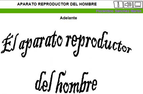 http://cplosangeles.juntaextremadura.net/web/edilim/tercer_ciclo/cmedio/las_funciones_vitales/la_funcion_de_reproduccion/el_aparato_reproductor_del_hombre/el_aparato_reproductor_del_hombre.html