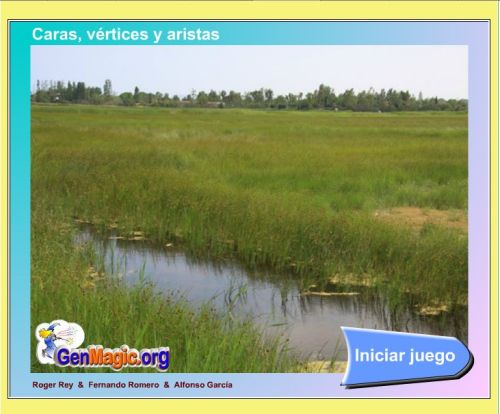 external image caras-vc3a9rtices-y-aristas.jpg?w=500&h=414