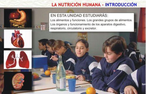 LA NUTRICIÓN HUMANA
