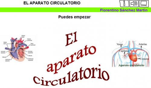 Resultado de imagen de aparato circulatorio juego 4º