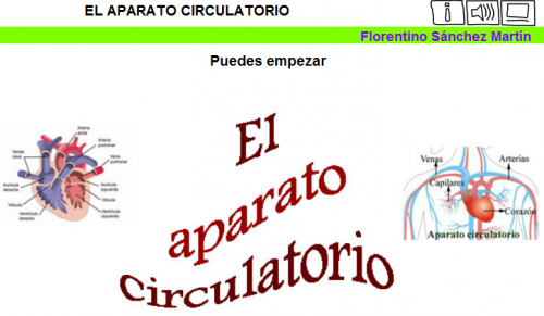 SISTEMA CIRCULATORIO | JUGANDO Y APRENDIENDO