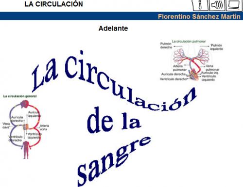 http://cplosangeles.juntaextremadura.net/web/edilim/tercer_ciclo/cmedio/las_funciones_vitales/la_funcion_de_nutricion/circulacion/la_circulacion/la_circulacion.html