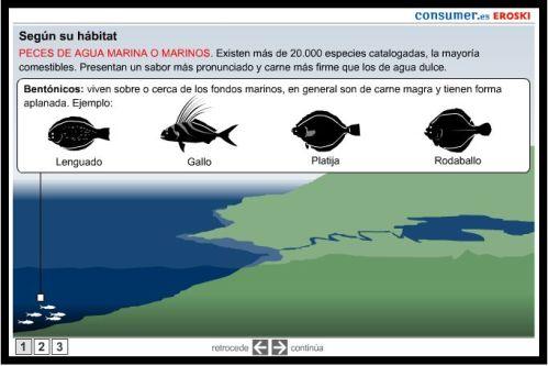 Pescados. clasificación y su valor nutritivo